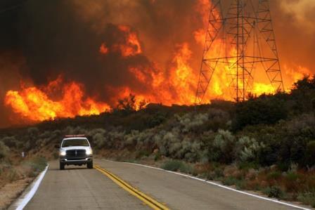 Лесные пожары в США.