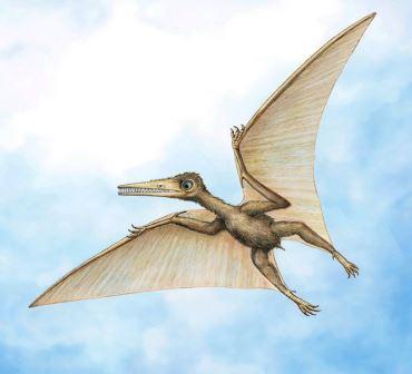 10 недавно открытых видов динозавров 10