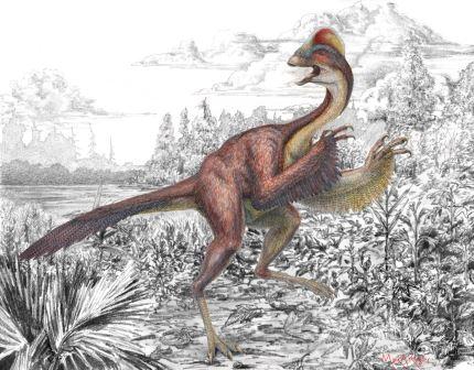 10 недавно открытых видов динозавров 3