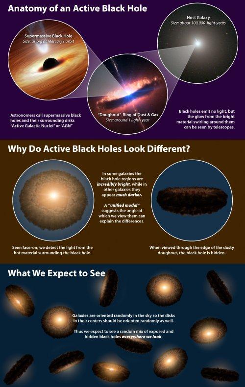 Наблюдения телескопа WISE ставят под сомнение теорию о структуре черных дыр2