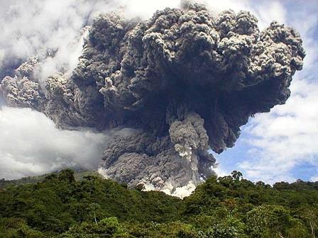 Глобальное потепление провоцирует вулканическую активность и губит растения
