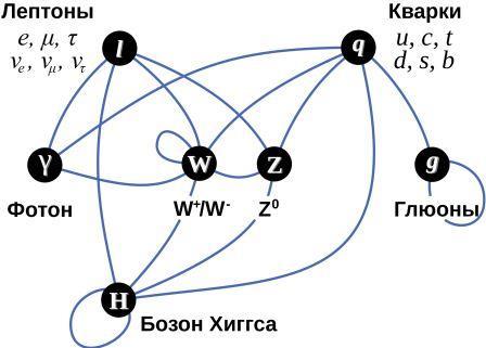 Взаимодействия между различными частицами в Стандартной модели