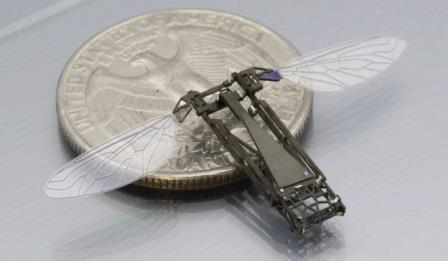 Не придётся ли вскоре в вопросах опыления полагаться на роботов-насекомых?