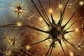 Нейроны в представлении художника