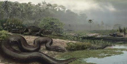 В Колумбии обнаружили останки древнего крокодила