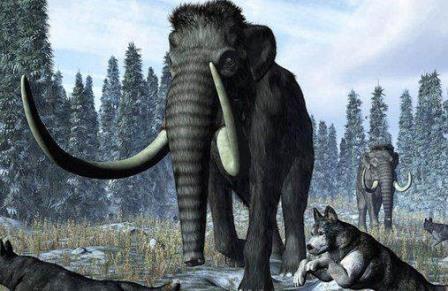 В Италии обнаружли скелет мамонта возрастом более миллиона лет