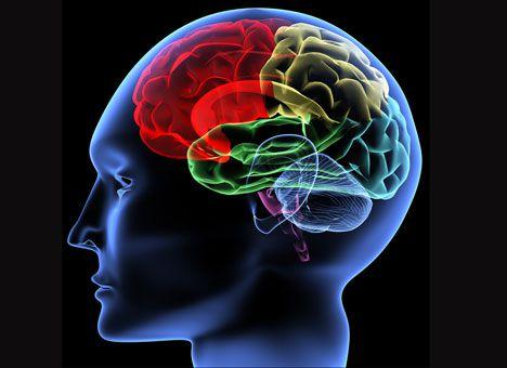 В мозге найдена молекула депрессии