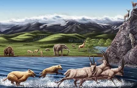 Фауна бассейна Занда в плиоцене (5-2,5 млн лет назад).
