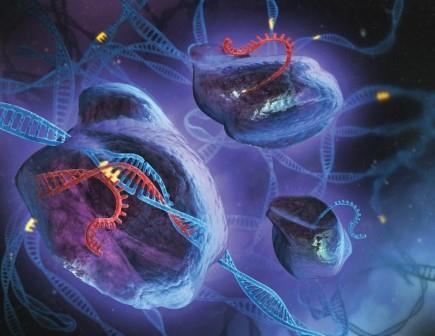 Какие важные научные открытия будут сделаны в ближайшие 50 лет