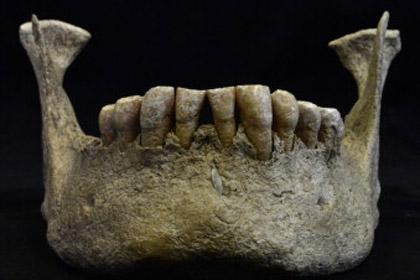 Загадка доисторического сибиряка раскрыта припомощи синхротрона