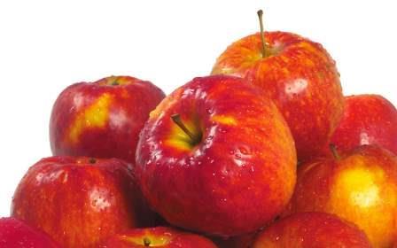 Два яблока в день приведут холестерин в норму