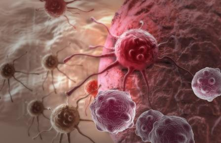 связь между старением, стволовыми клетками и раком установлена