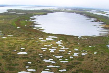 Термокарстовые озера в Арктике