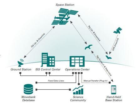 Схема работы системы ICARUS