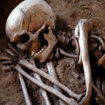 Первая  крупномасштабная война произошла 13 тыс. лет назад