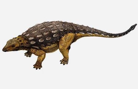 Ранний представитель анкилозаврид Cedarpelta