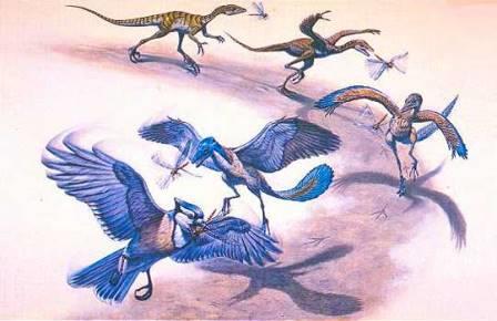 Палеонтологи уточнили путь от динозавров к птицам