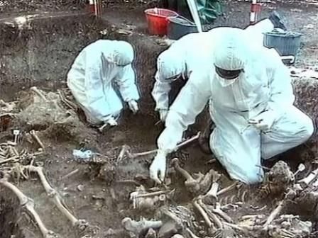 В эпидемиях виновна география, а не мутация микроорганизмов