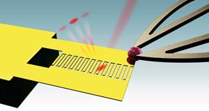 Микроманипулятор захватывает микрочастицу и помещает ее на кантилевер для взвешивания