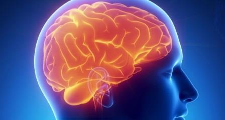Мозг человека активно работает даже во время сна