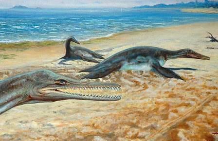 Плезиозавр Polyptychodon Реконструкция Petr Motlitba