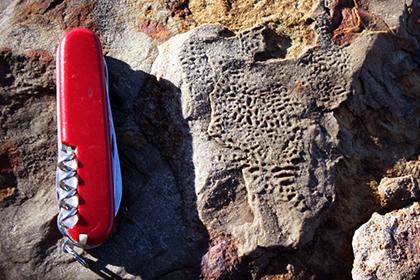 Раскрыта тайна трещинок на скалах возрастом в полмиллиарда лет
