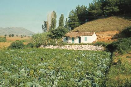 Село Асирос