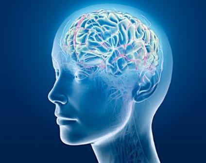 После смерти мозга сознание человека еще три минуты активно