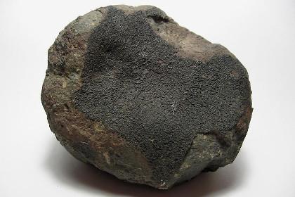 Хондритовый метеорит NWA 869 © wikipedia.org