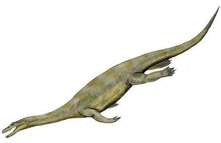 Гигантский нотозавр