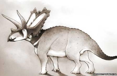 Два новых вида цератопсов обнаружили на музейной полке