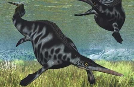 Близкий к Eohupehsuchus brevicollis хупехсухус Nanchangosaurus
