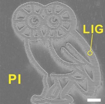 Полученное учеными изображение совы