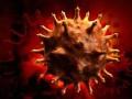 Модель вируса иммунодефицита человека