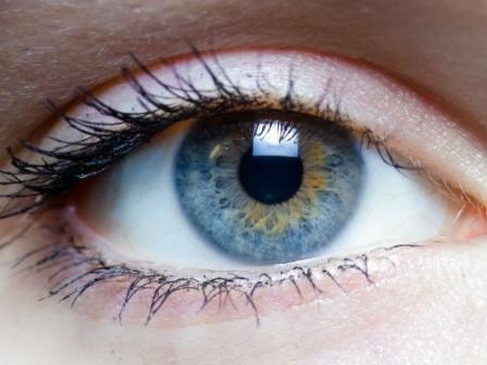 Открыты живущие на поверхности глаз бактерии