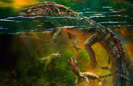 Самка Philydrosaurus с детенышами