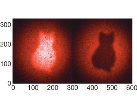 Изображение кота, полученное при помощи квантовой технологии