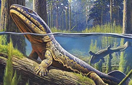 Половой диморфизм помогает выжить при массовых вымираниях