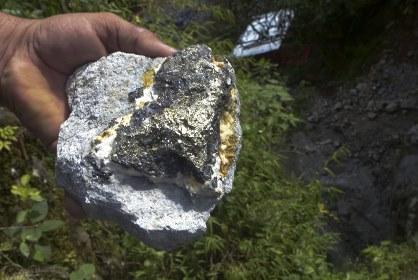Крупнейшее месторождение золота на Земле создали бактерии