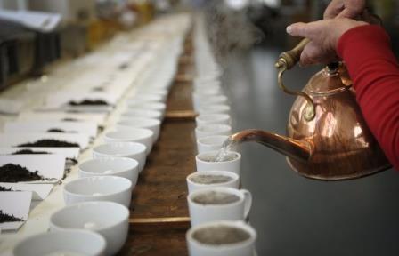Употребление черного чая укрепляет кости