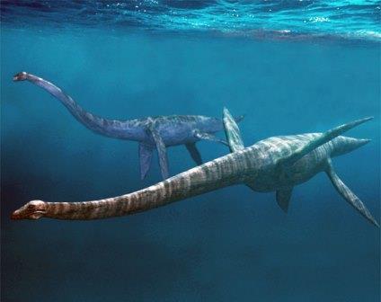 В Оренбургской области нашли ранее неизвестный вид плезиозавров