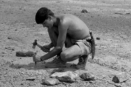 Антрополог Джеймс Мид работает с окаменелостями кита (Кения, 1964)