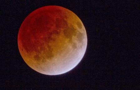 Лунное затмение ©EPA/EVERETT KENNEDY BROWN