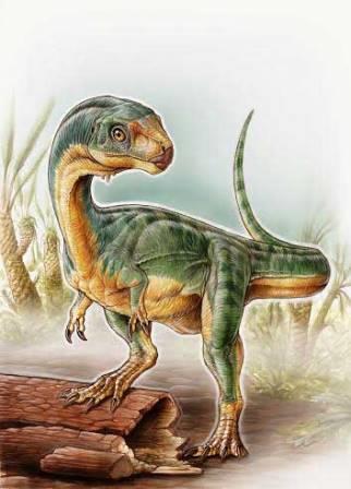 Chilesaurus diegosuarez
