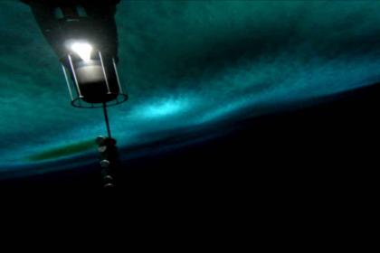 видео подледной жизни Антарктиды
