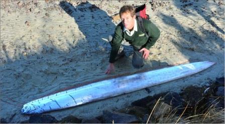 «Сельдяного короля» выбросило на берег Новой Зеландии