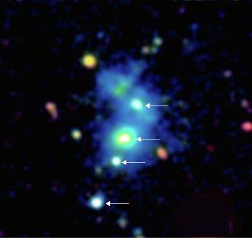 Четыре квазара, найденных в галактике SDSS J0841+3921 в созвездии Рыси