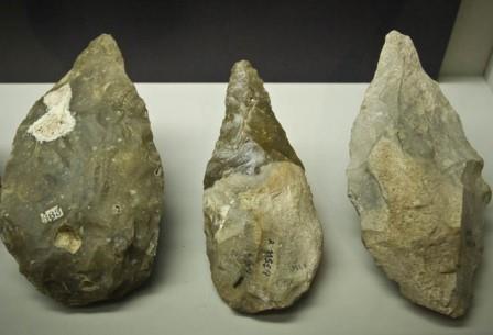Открытие опровергает давнюю теорию о том, что «человек умелый» был первым производителем инструментов