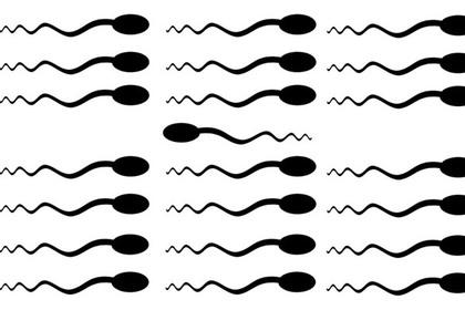 Схематическое изображение сперматозоидов, плывущих против течения