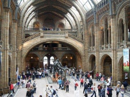 Лондонский музей естественной истории